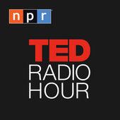 7-TED Radio Hour